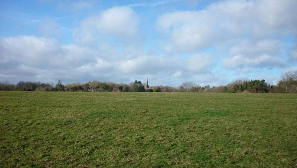 Ashurst Field